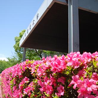 学術・教育研究所