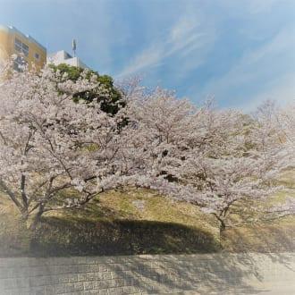 令和3年度入学式(九州情報大学・九州情報大学大学院・九州情報大学日本語別科)の実施について